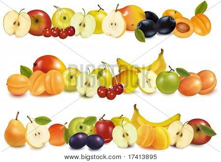 Three fruit design borders isolated on white. Vector.