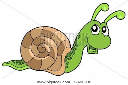 Cute snail on white background - vector illustration.