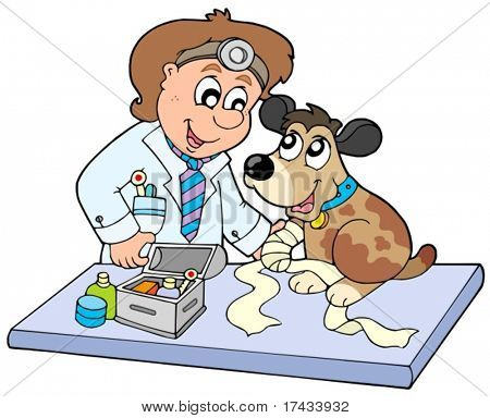 Dog with sick paw at veterinarian - vector illustration.