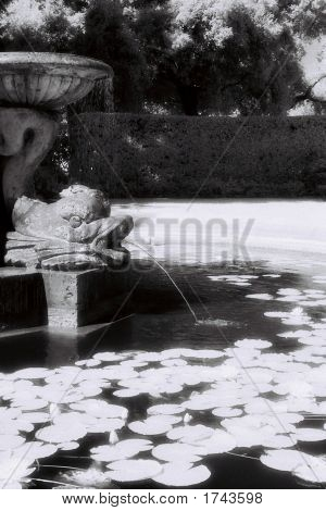 Infrared Fountain 2