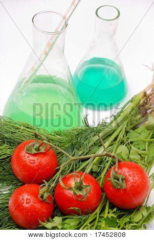 GMO food concept