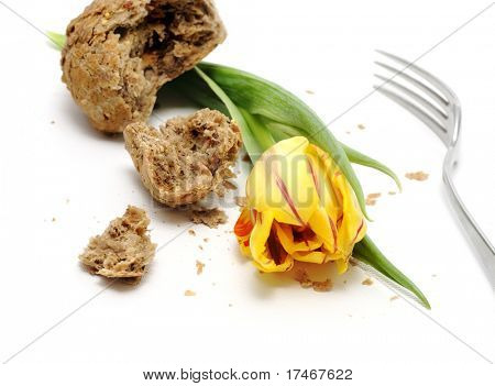 Yellow tulip and a lot of crumbs of bread