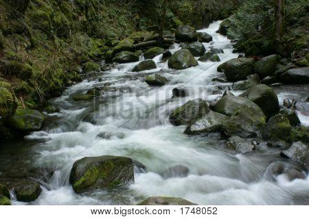 Brisk Mountan Stream