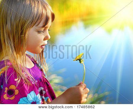 Looking on dandelion flower