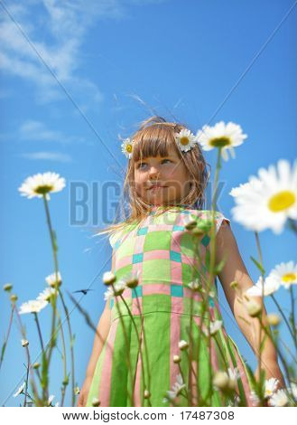 Little girl in marguerite field
