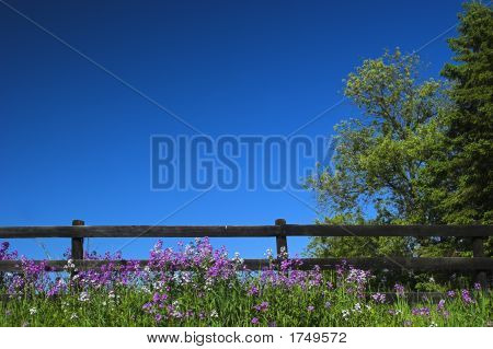 Black Fence And Blue Sky