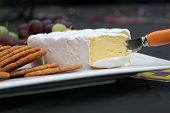 stock photo of cheese platter  - close up of camembert cheese and crackers on white platter - JPG