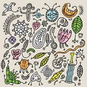 image of amoeba  - Abstract drawing - JPG