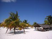 Caribbean Beach Bar
