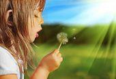 Summer fun, sweet little girl blowing dandelion on the meadow