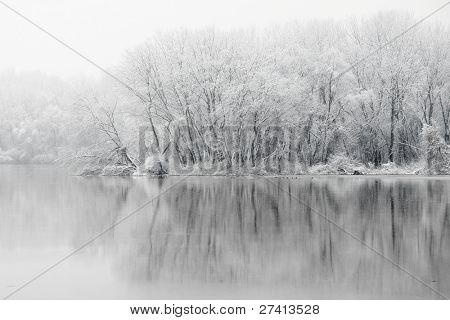 Frozen forest on the riverside