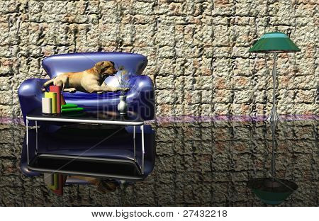 dog on a couch in hotel