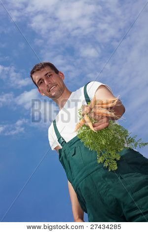 Organic farmer offering a bunch of freshly harvested carrots