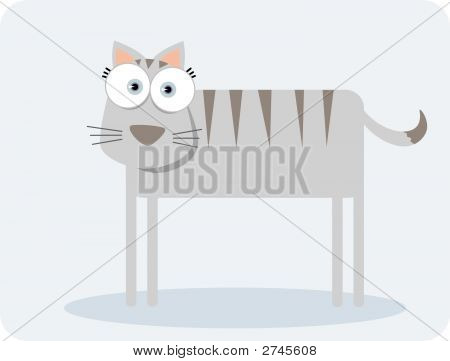 Square Animal Cat