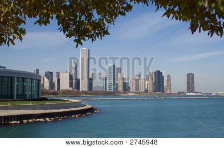 Shedd Aquarium y el horizonte de Chicago