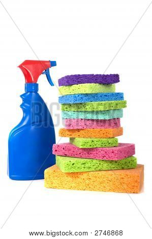 Spray Bottle And Sponges