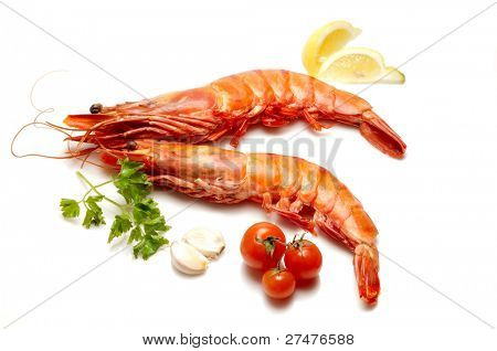 tiger shrimps and tomatoes