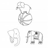 Vector Illustration Of Elephant And Asian Symbol. Set Of Elephant And Elephant Stock Symbol For Web. poster
