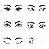 Set Collection Of Blue Female Eyes And Brows On White Background. Different Cartoon Eye Expressions. poster