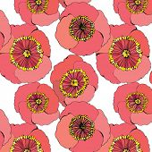 seamless floral background with poppy