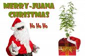 Marijuana Christmas. Santa Claus with a Marijuana Plant in a Green Foil Wrapped container. Text read poster
