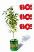 Marijuana Christmas. Marijuana Plant in a Green Foil Wrapped plant pot. Room for text. Text reads Ho poster