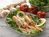 foto of norway lobster  - norway lobster with salad on dish - JPG