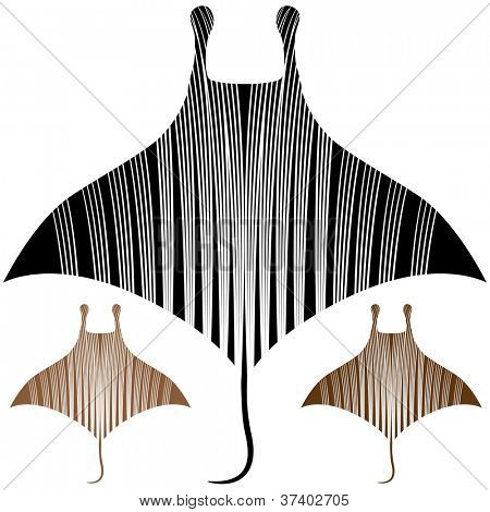 An image of a manta ray drawing.