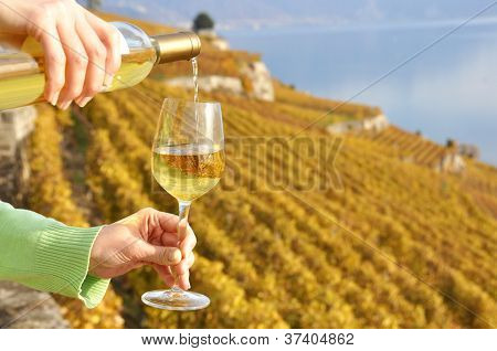 Glass of wine in the hand. Lavaux, Switzerland