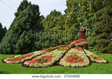 Blume Pfau Skulptur. Insel Mainau, Deutschland