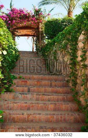 Green Stairs With Flowers On Arch And Blue Sly