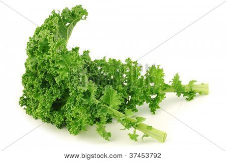 freshly harvested  kale cabbage on a white background