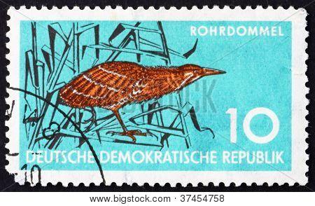 Postage stamp GDR 1959 Bittern, Wading Bird