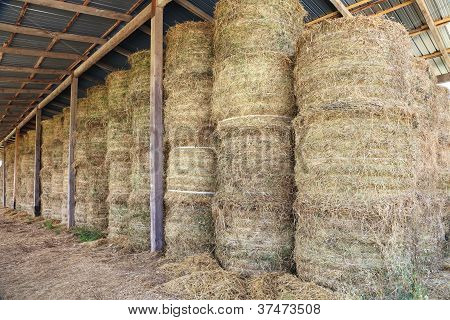 hay bale stacked in barn