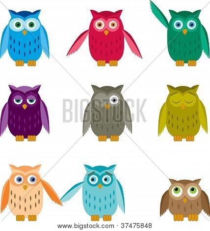 Set Of Colorful Owls