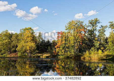 Autumn Landscape On The River Bank