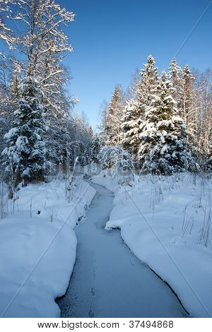 Forest in winter with small river of ford, beautiful Christmas time in Latvia, Baltic states, Europe