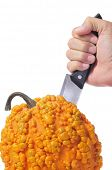 someone spiking a knife in a warty pumpkin on a white background
