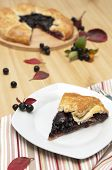 stock photo of aronia  - Slice of aronia pie and fresh berries - JPG