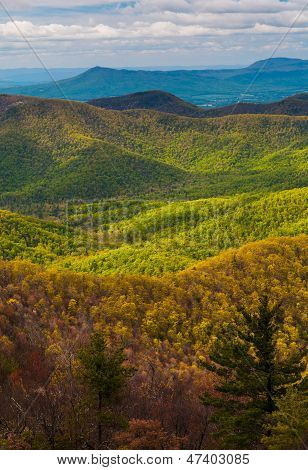 Spring Colors In The Appalachians, Seen From Blackrock Summit In Shenandoah National Park, Virginia.