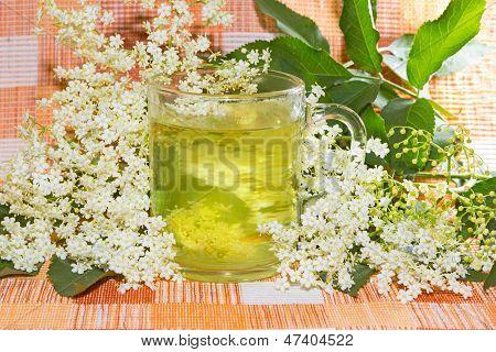 Herbal Infusion Of Elder Or Sambucus Blossoms