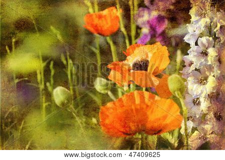 Retro Poppies And Larkspur