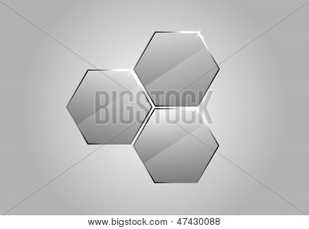 Vector Glass Honeycombs