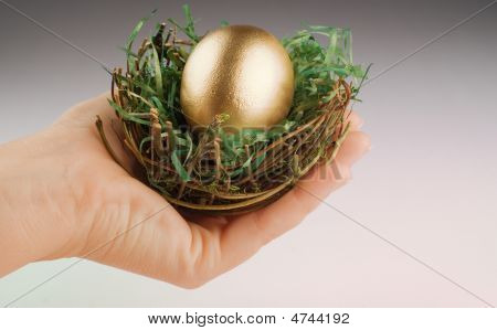 Hand Holding Nest With Golden Egg