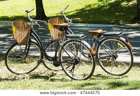 Two Vintage Bicycle outside on a sunny day