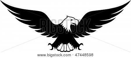 bald eagle design vector