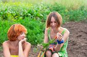 foto of oddities  - Two farmer woman on the vegetable garden - JPG