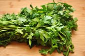 foto of italian parsley  - Italian parsley on a wooden cutting board - JPG