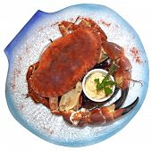 stock photo of cooked blue crab  - Cooked crabs with sauce on blue plate - JPG