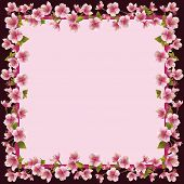 stock photo of sakura  - Floral frame with sakura blossom  - JPG